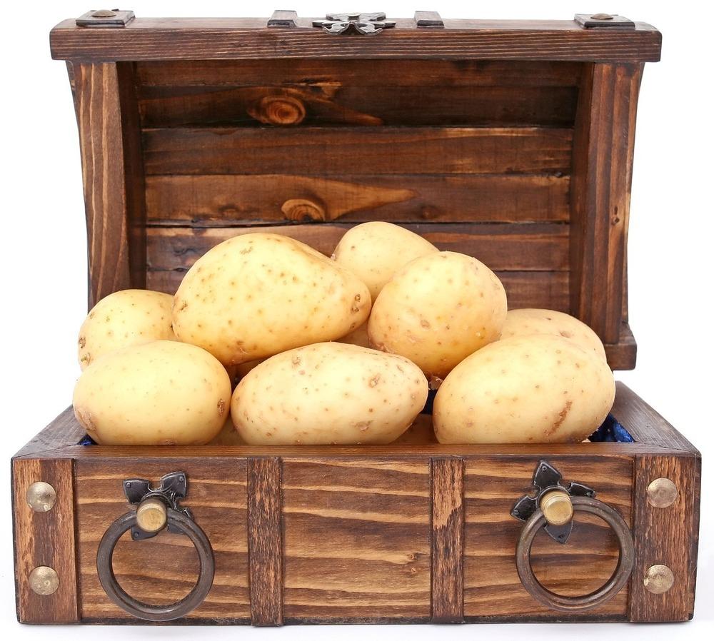 Сколько калорий в вареной картошке с маслом
