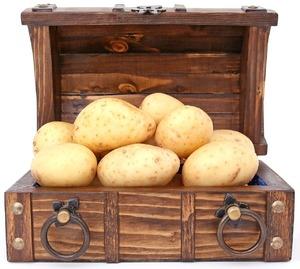 Можно ли поправиться от картофеля, и как снизить его калорийность?
