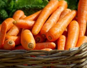 Можно ли морковь при похудении